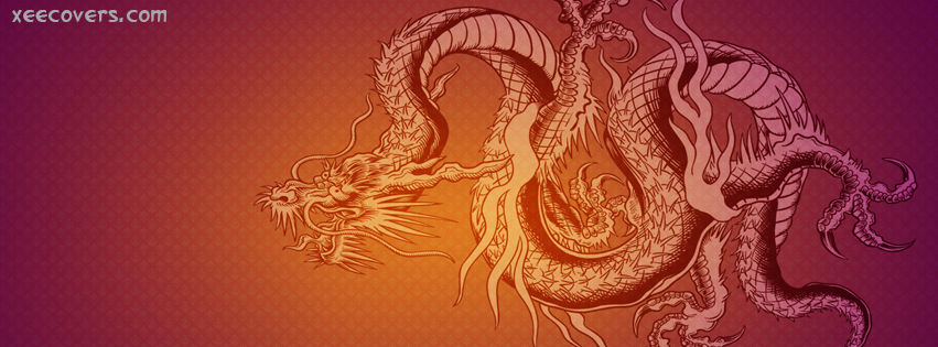 3D Dragons FB Cover Photo HD