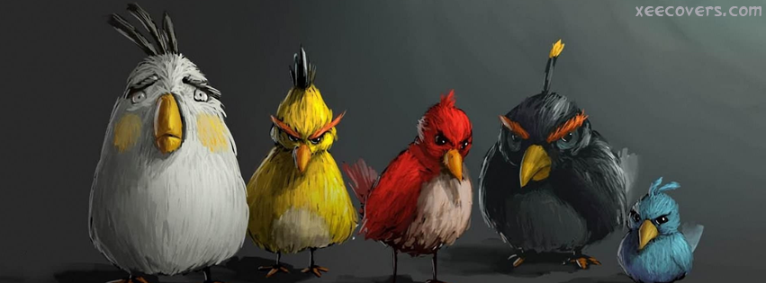 Angry Birds Painting FB Cover Photo HD