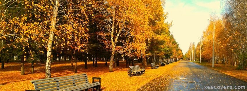 Autumn Is Saying Something FB Cover Photo HD