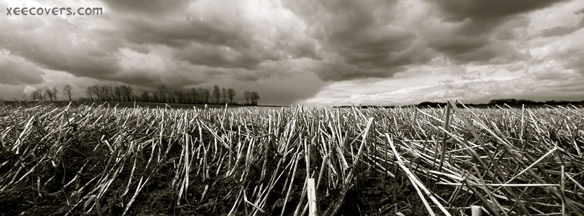 Black And White Fields facebook cover photo hd