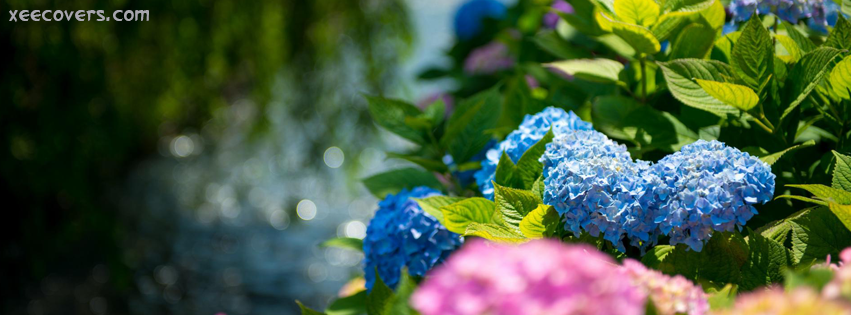 Blue Flowers With Green Leaves facebook cover photo hd