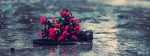 Camera And Flowers Floating On Water