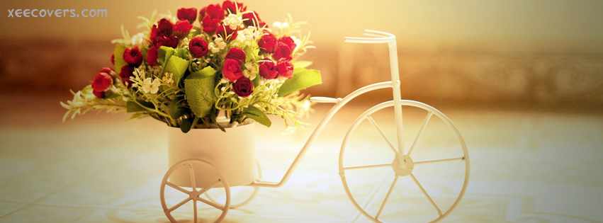 Flowers Bookeh For Someone Special FB Cover Photo HD