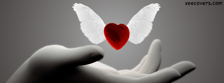 Flying Heart FB Cover Photo HD
