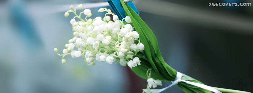 Lily of The Valley facebook cover photo hd