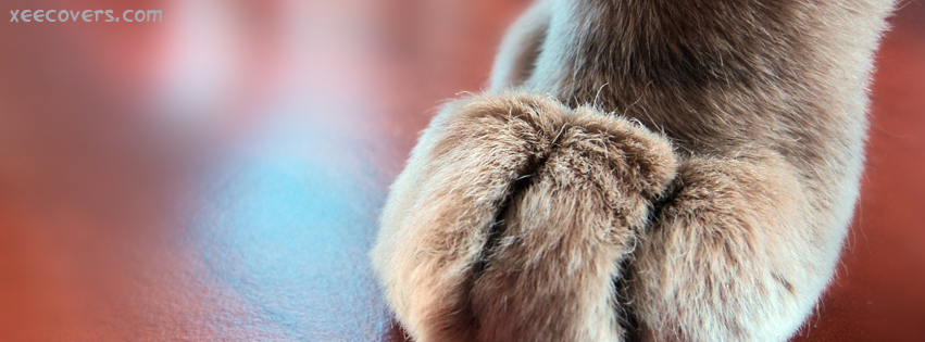 Pups Paw FB Cover Photo HD