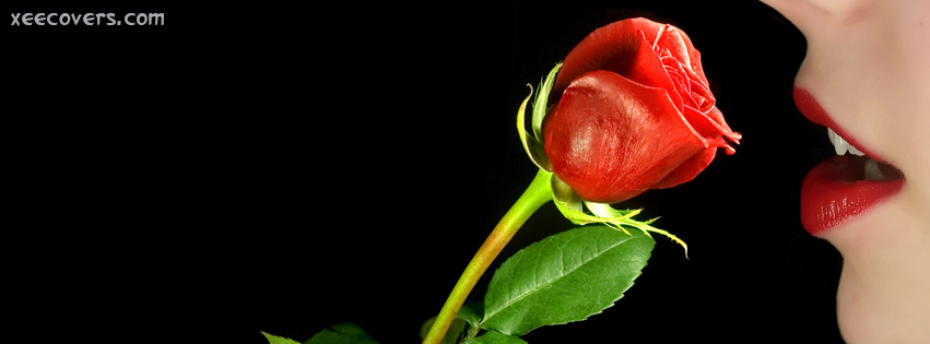 red rose with love fb cover photo xee fb covers