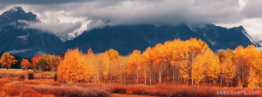 Red Trees With Mountains Around FB Cover Photo HD
