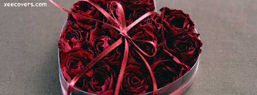 Roses Gift For Your Lover FB Cover Photo HD