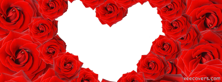 Roses Heart facebook cover photo hd