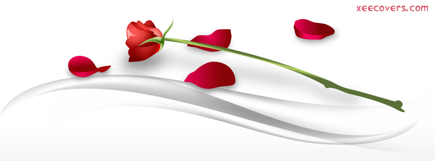 Roses Tulips FB Cover Photo HD