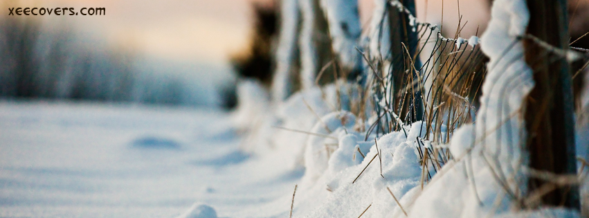 Snow Straws Photography facebook cover photo hd