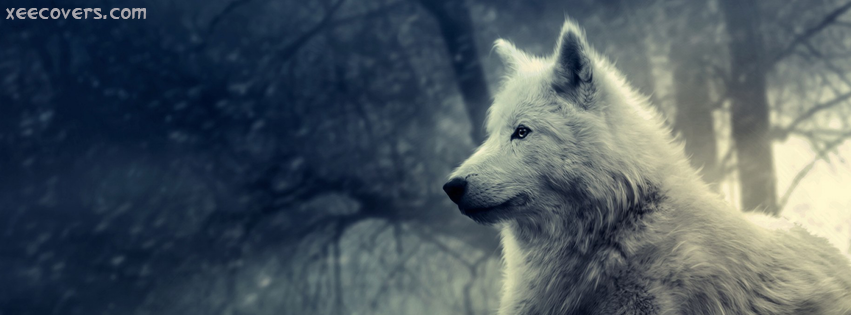 White Wolf FB Cover Photo HD