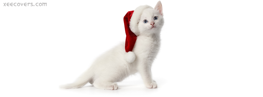 Christmas Cat facebook cover photo hd