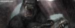 King Kong Close View