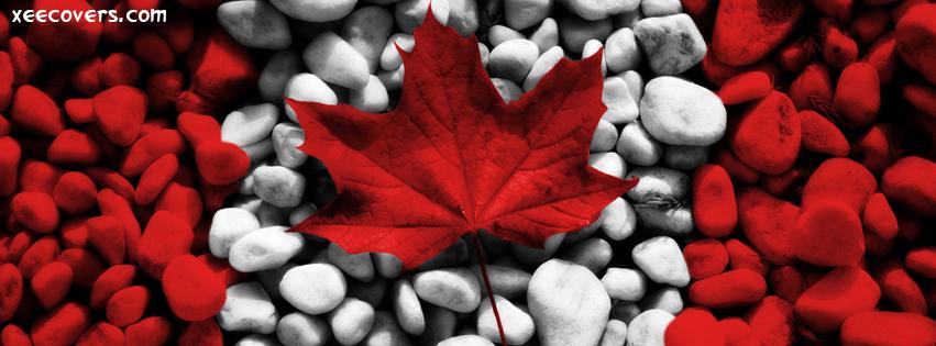 Red Leaf FB Cover Photo HD