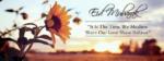 flower Eid Mubarak quotes