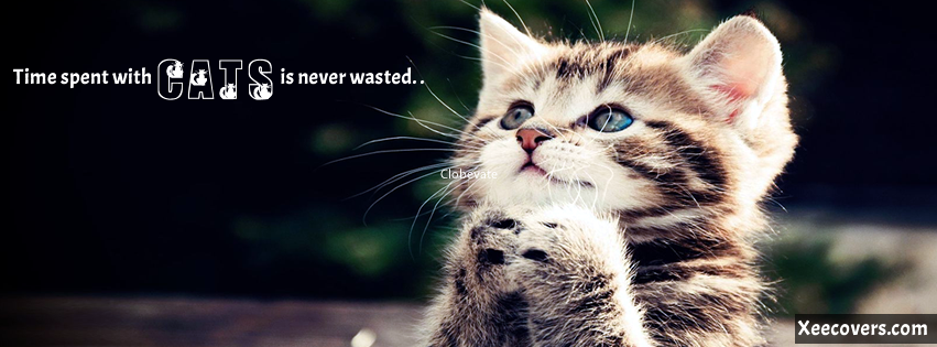 Cats Cover Photo for FB FB Cover Photo HD